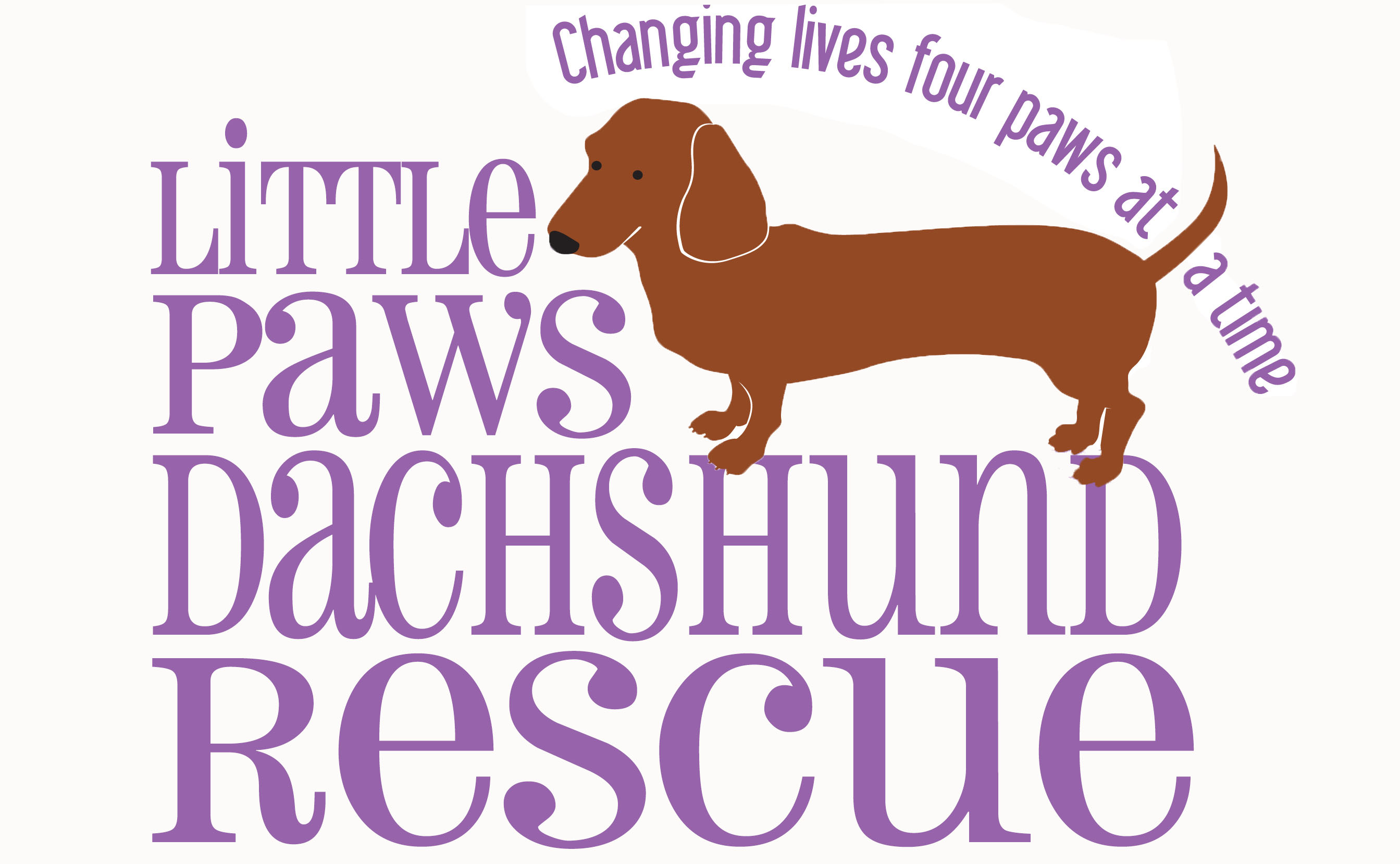 Available Dachshunds Little Paws Dachshund Rescue
